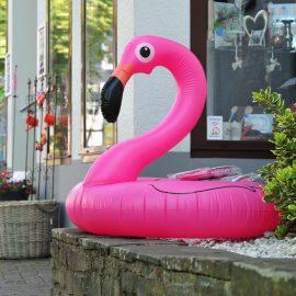 SOMMER!! :) wir haben den hübschesten Begleiter für Euer Planschbecken